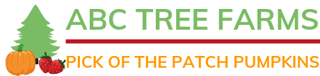 ABC Tree Farms & Pick of the Patch Pumpkins Logo